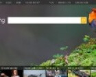 1 in 5 People Use Bing Search