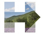 After Initial Criticism, the Hillary Clinton Logo is Showing its True Colors