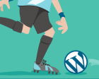 The 7 Reasons Why WordPress Developers are Paid Peanuts