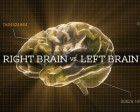 Are You a Right-Brained or Left-Brained Designer?