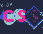 State of CSS – 2020
