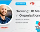 Growing UX Maturity in Organizations: Finding a UX Champion and Demonstrating ROI