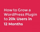 How to Grow a WordPress Plugin to 20k Users in 12 Months